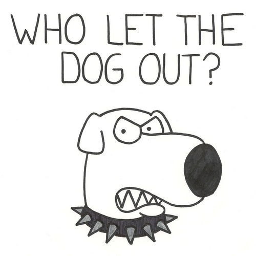 Who let the dogout?